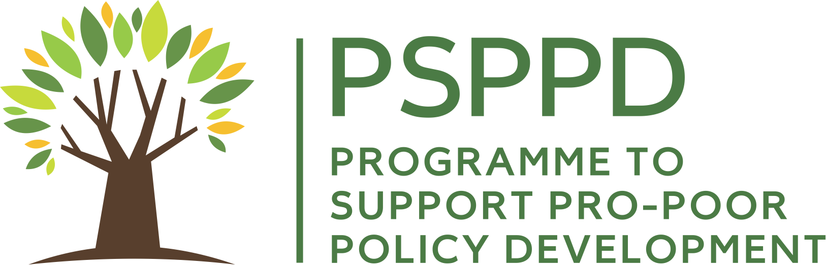Programme to support pro-poor policy development